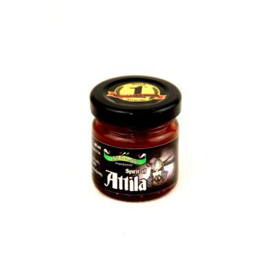 Spirit of Attila